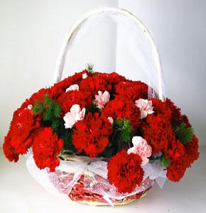 网上花店-怀抱