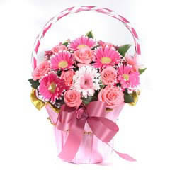 鲜花订购-祝福父母