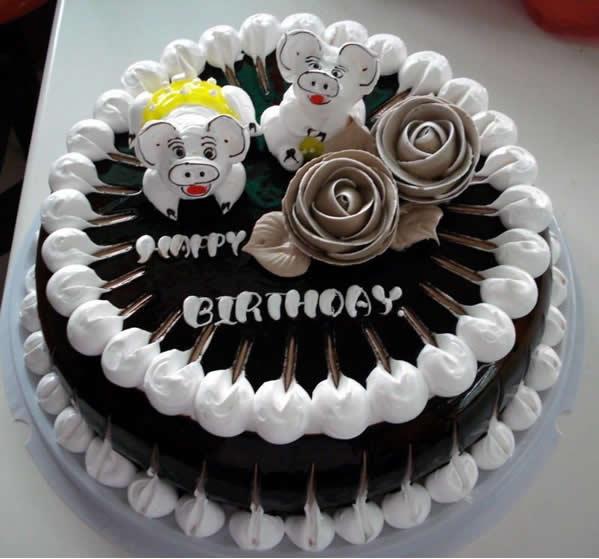 巧克力蛋糕-宠物猪