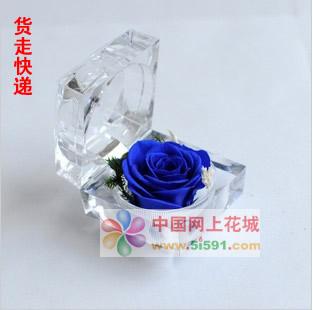 鲜花网-戒指盒保鲜花-蓝玫瑰