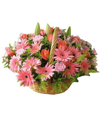 送花-特别的今天