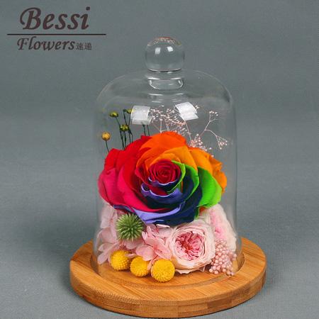 厄尔多瓜玫瑰-永生花 期待爱
