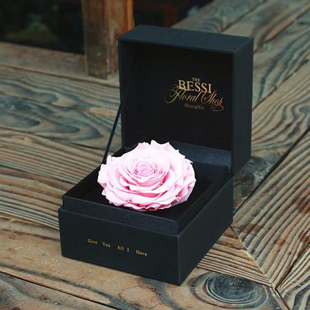 进口七彩玫瑰-永生花 粉色玫瑰