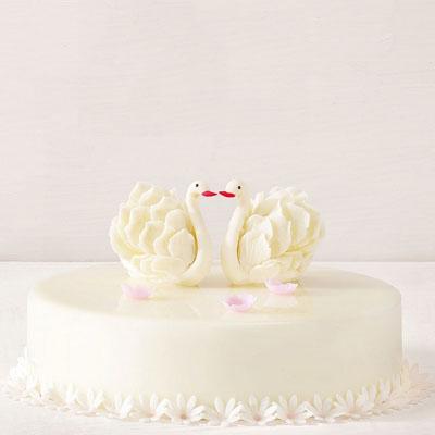 黑天鹅生日蛋糕-黑天鹅 美丽人生