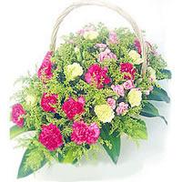 冬至节礼物                                                                                          鲜花网:辛苦了妈妈