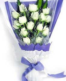 开张花蓝                                                                                            鲜花网:爱无价