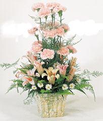 平安夜礼物                                                                                          鲜花网:远方的祝福