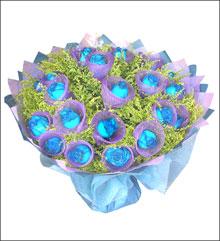 520情人节礼物                                                                                       鲜花网:蓝色恋人
