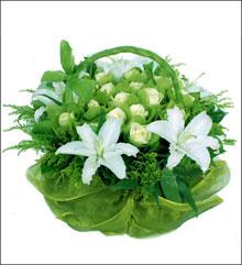 端午节礼物                                                                                          鲜花网:风花雪月