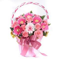 端午节礼物                                                                                          鲜花网:祝福父母