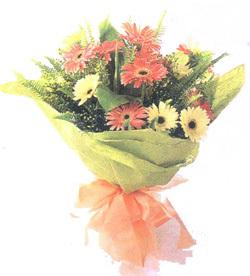 鲜花订购网                                                                                          鲜花网:伟大的他