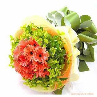 鲜花配送网                                                                                          鲜花网:欢乐
