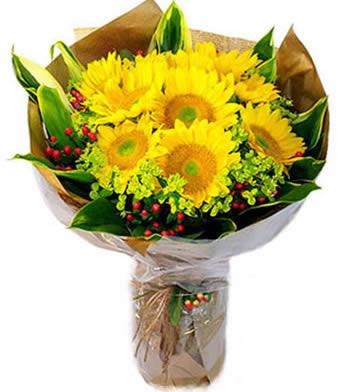 送花上门                                                                                            鲜花网:我的小太阳