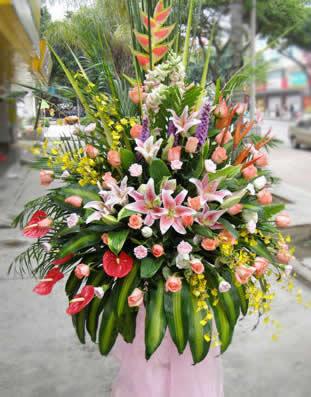 鲜花订购网                                                                                          鲜花网:宏图伟业