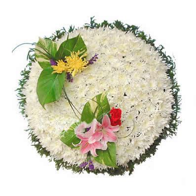 护士节礼物                                                                                          鲜花网:英魂长存
