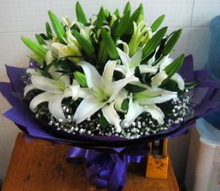 华丽环岛鲜花