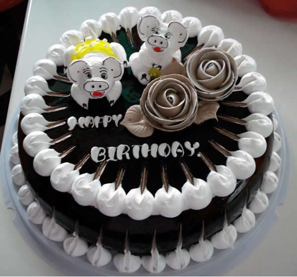 瑞安生日蛋糕:宠物猪