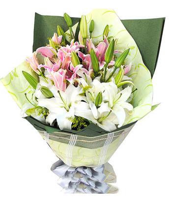 内蒙古送花-祝福