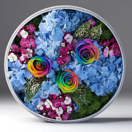 永生花:彩虹玫瑰-五彩缤纷