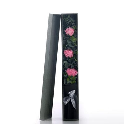常德肥皂花:香皂花-3朵粉玫瑰