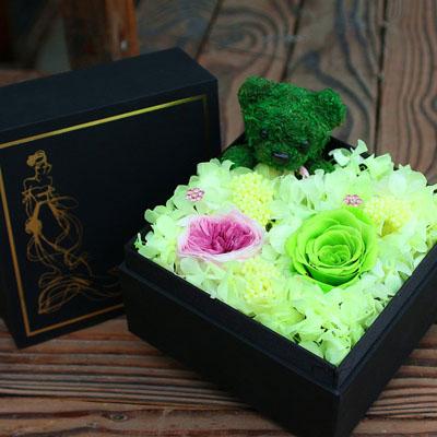 常德永生花:永生花 绿色玫瑰