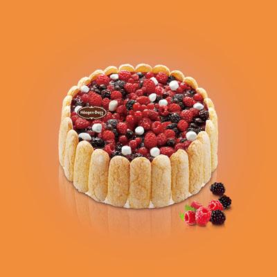 哈根达斯:哈根达斯 冰淇淋蛋糕 夏洛特