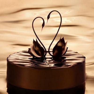 天津水果篮:黑天鹅 幸福时光