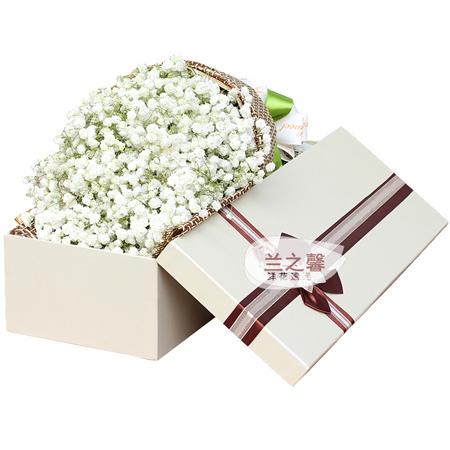 平安夜礼物                                                                                          鲜花网:纯纯的爱