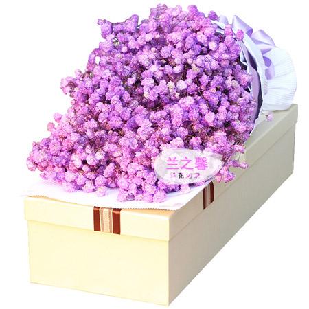 儿童节礼物                                                                                          鲜花网:紫色浪漫