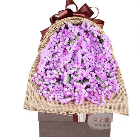 平安夜礼物                                                                                          鲜花网:紫色柔情