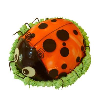 辽宁省生日蛋糕:甲壳虫