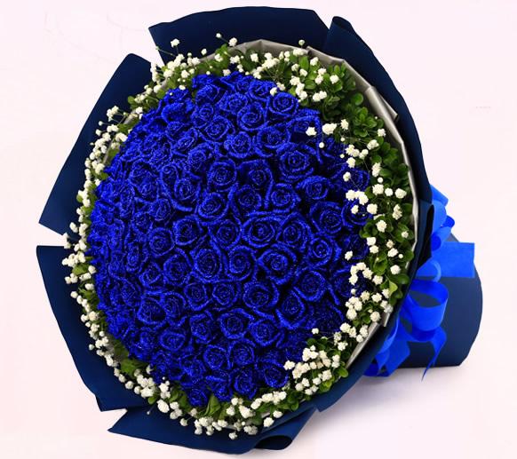 鲜花定购-海之蓝