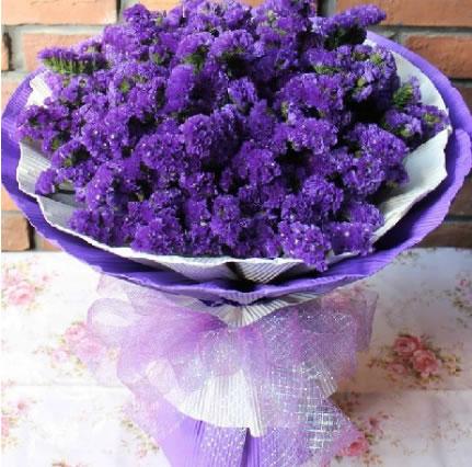 开张花蓝                                                                                            鲜花网:为爱努力