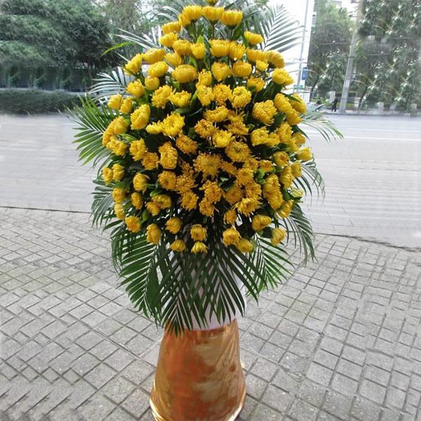 护士节礼物                                                                                          鲜花网:举踵思望